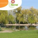 Miasto kwiatów i zieleni - wizualizacja dla Město Stochov