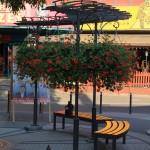 Czy park Tysiąclecia jest atrakcyjny dla mieszkańców Zielonej Góry?