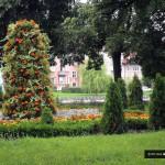 Jak dbać o zieleń w mieście?