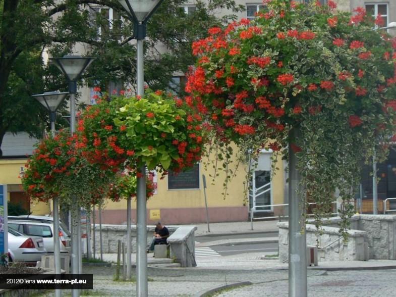Donice kwiatowe Jiflor