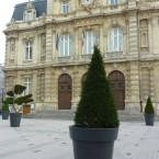 Francuski przepis na dekoracje