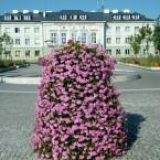 Białobrzegi