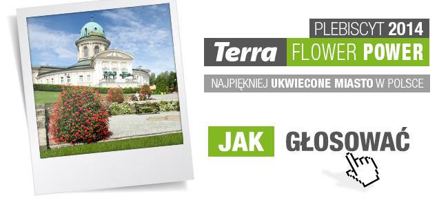 terra flower power - jak głosować