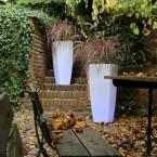 Ogród modny jesienią