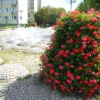 Warszawa Ursus