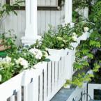 Jak dbać o rośliny w skrzynkach?