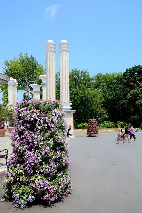 kwietniki miejskie terra bułgaria (5)