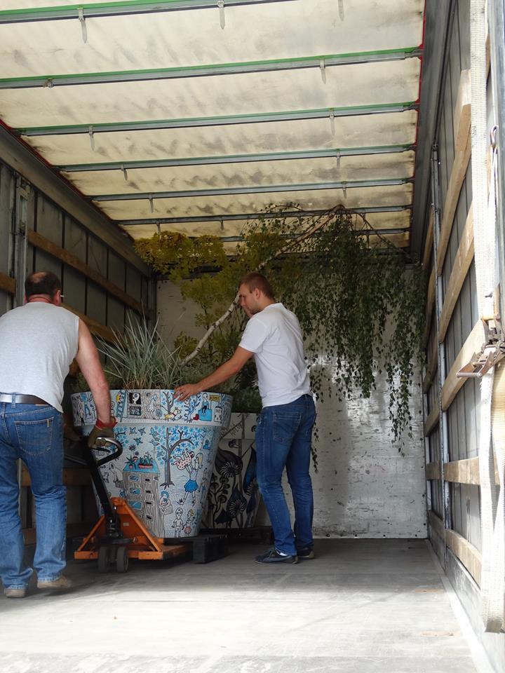 wędrujące drzewa wielkie donice nunoni (3)