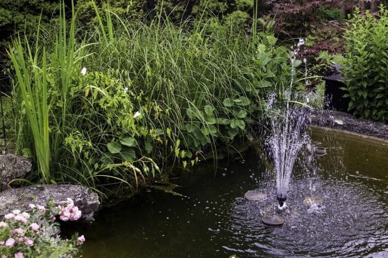 woda w ogrodzie (1)