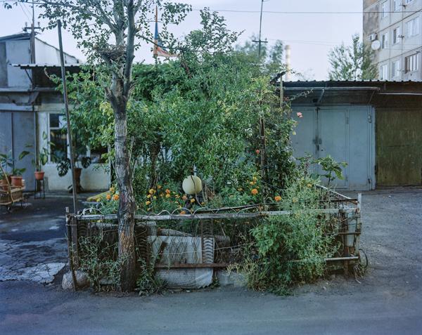 Ogrodnictwo miejskie – snobistyczne czy ratunkowe (3)