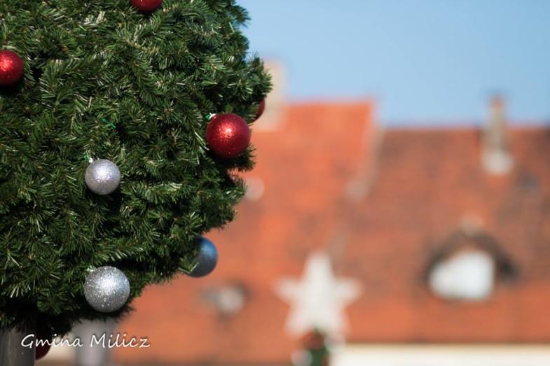 świąteczne dekoracje terrachristmas milicz (6)