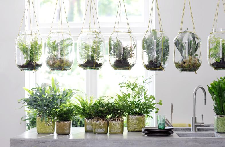 Szklane ogródki nabite w butelkę (4)
