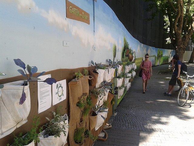 miejskie ogrody niemcy (2)