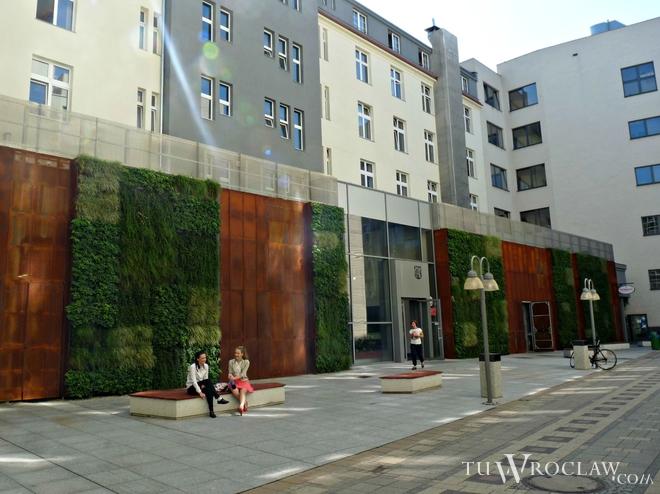 zielone ściany wrocław (2)