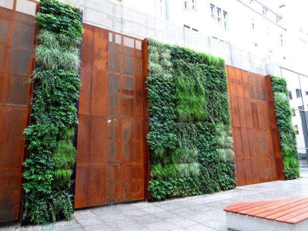 zielone ściany wrocław (5)