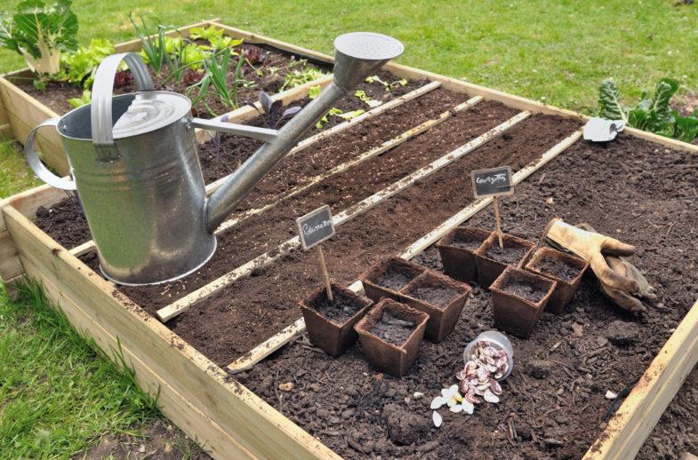 Ogr d na wysoko ciach inspirowani natur for Organiser son jardin potager