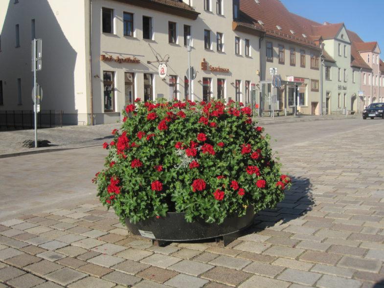 ukwiecenie miasta terra wieże kwiatowe niemcy (4)