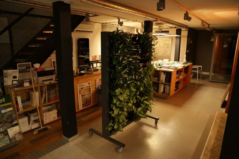 żywe ściany terrawal (1)