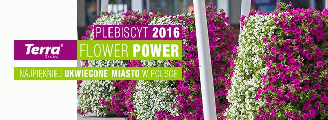 plebiscyt 2016