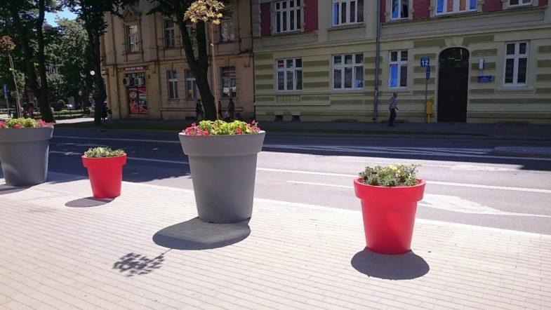 donice nunoni dla miast (4)