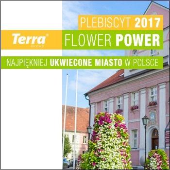 O Plebiscycie Terra Flower Power
