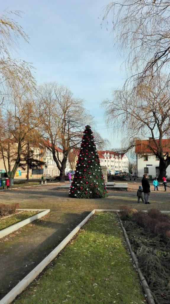 terrachristmas-dekoracje-miejskie-nowogrodziec-4