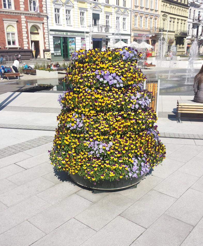 wiosenne ukwiecenie miasta wieże kwiatowe terra