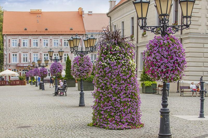 wieże kwiatowe terra świebodzin