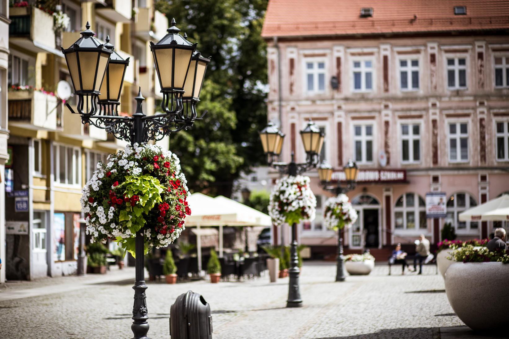 wiszące wieże kwiatowe terra ukwiecenie miasta świebodzin (3)