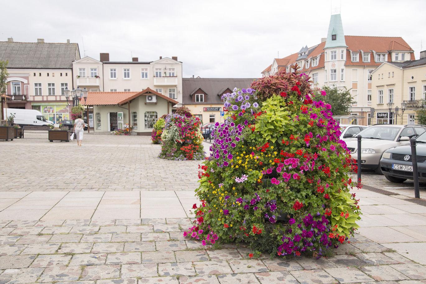 jak ukwiecić rynek wieże kwiatowe terra