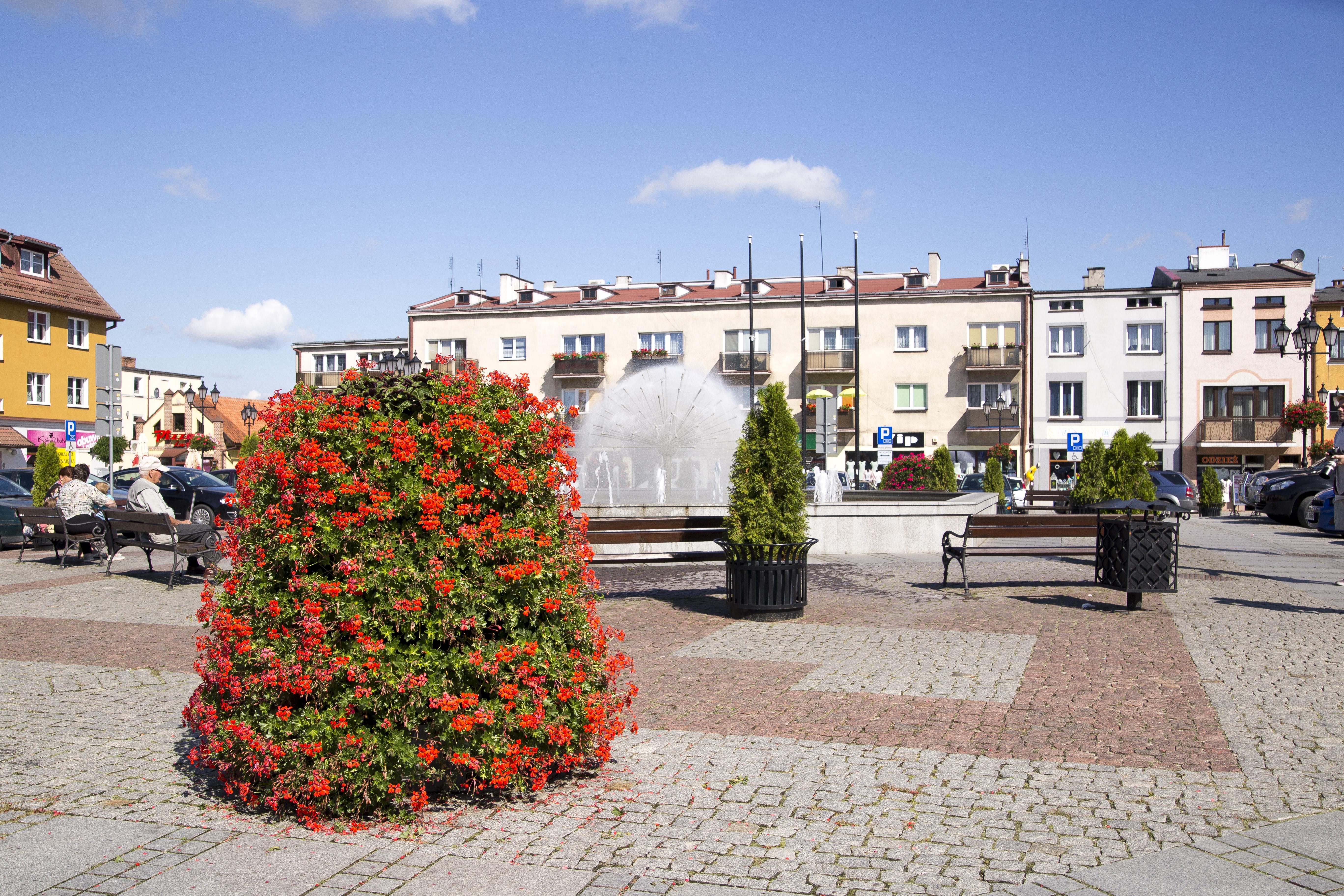 wieże kwiatowe terra ukwiecenie rynku