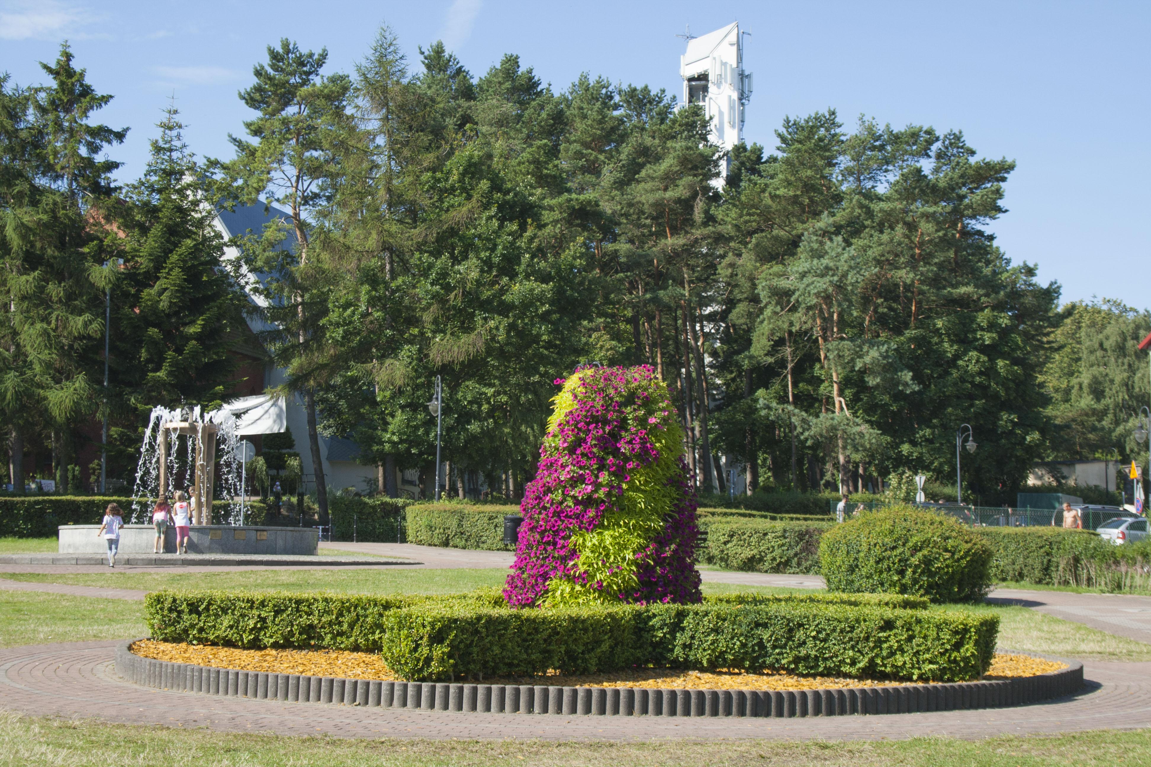 wieze kwiatowe terra