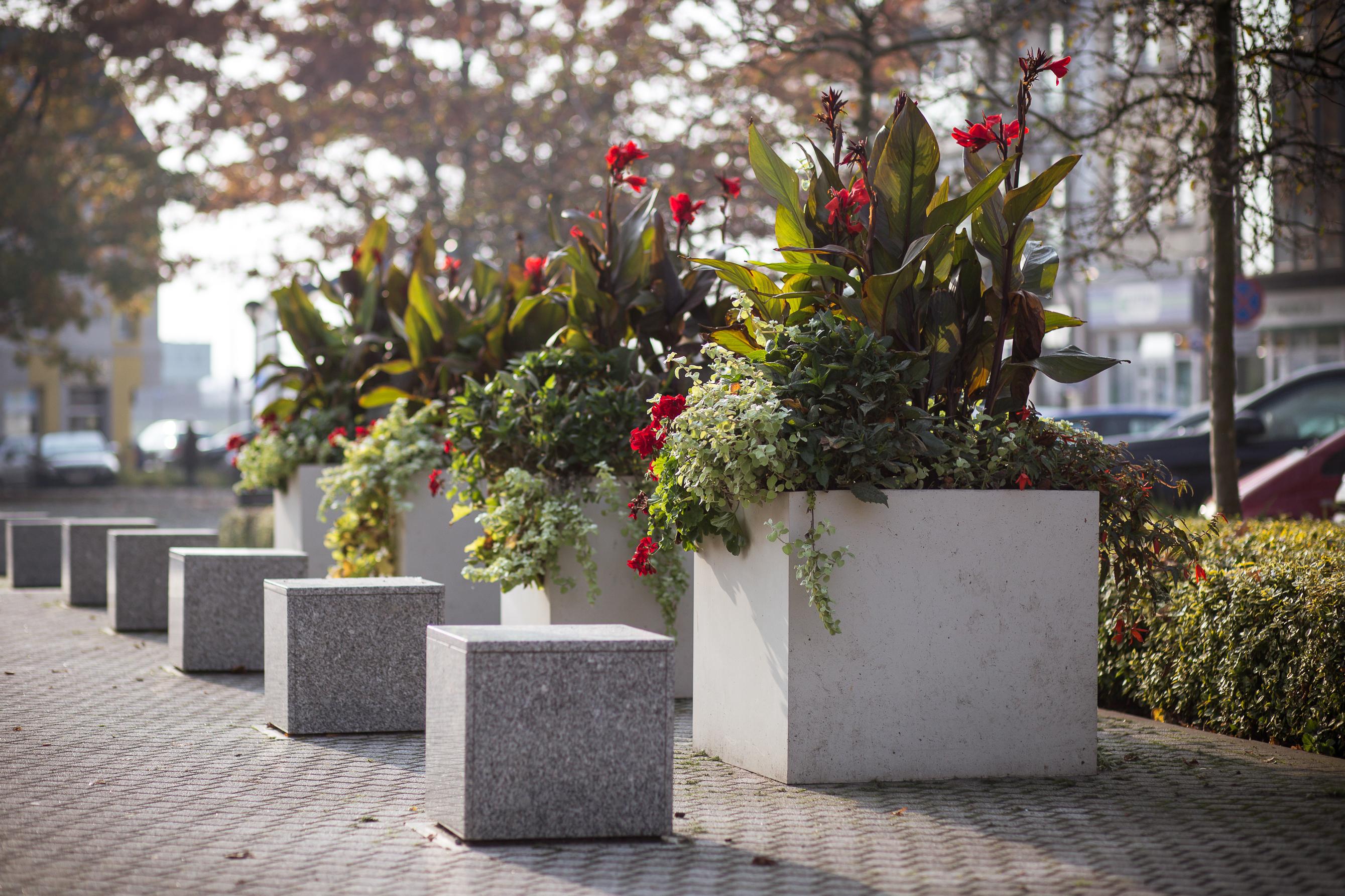 jesienne dekoracje miejskie wieże kwiatowe donice terra Świnoujście (6)