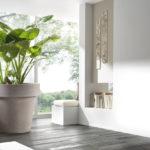 Donice polietylenowe przyszłością ogrodnictwa? Jakie donice wybrać do domu?