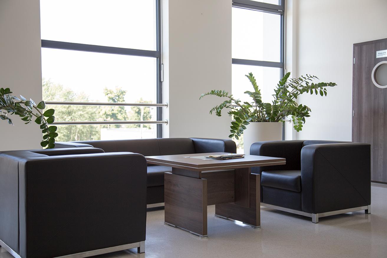 Jak wybrać donice dla biur? donice terraform