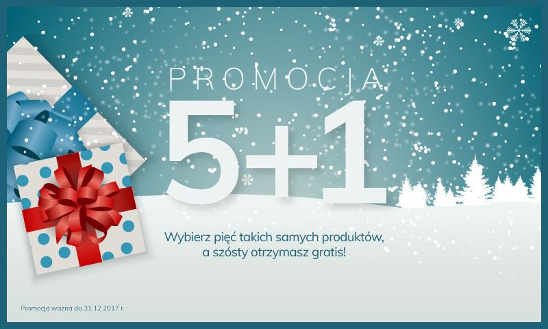 promocja 5+1 terra group