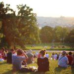 Rola parków w przestrzeni miejskiej