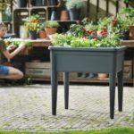 Wyprzedź wiosnę – stwórz domowy ogródek z warzywnikiem!