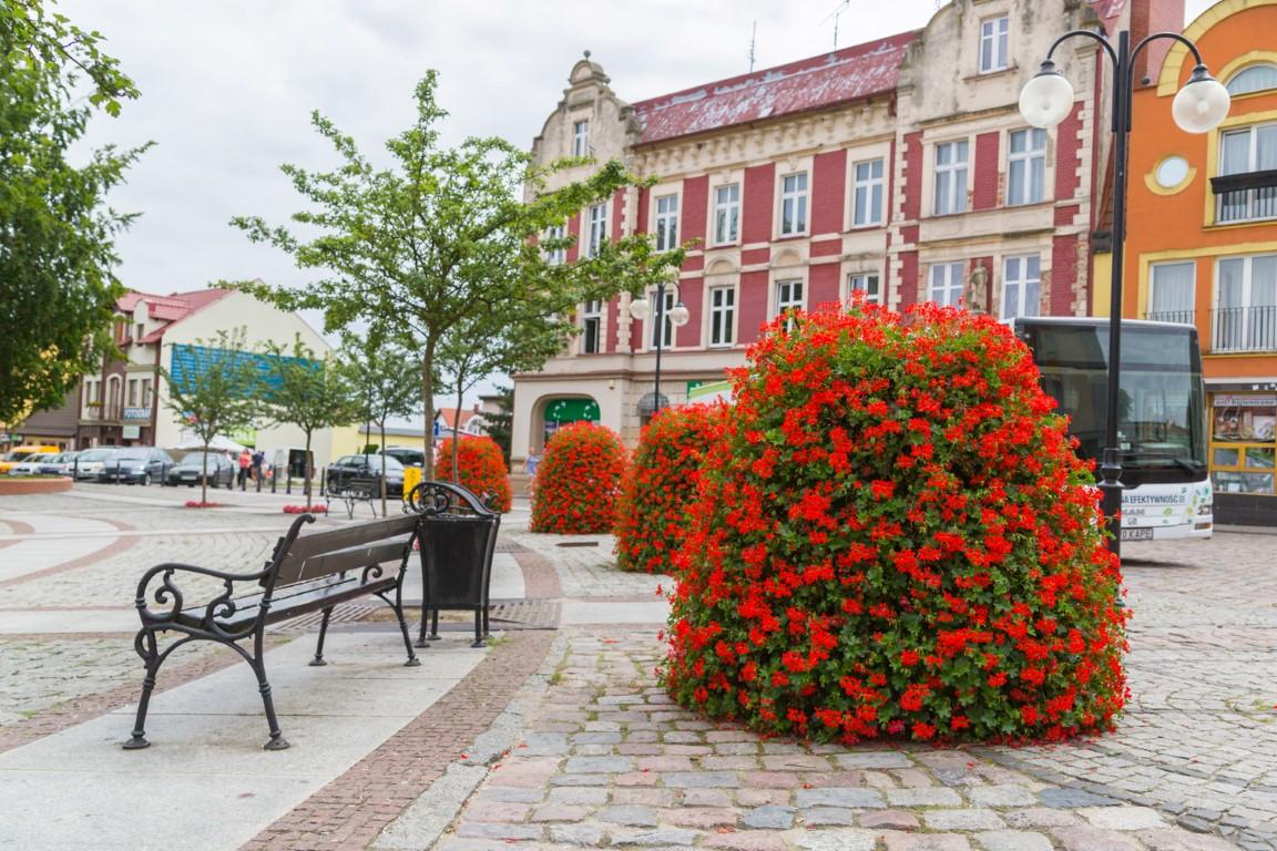 wieże kwiatowe terra ukwiecenie miasta kwietniki