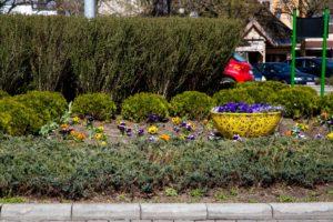 ażurowe dekoracje donice miejskie terra group