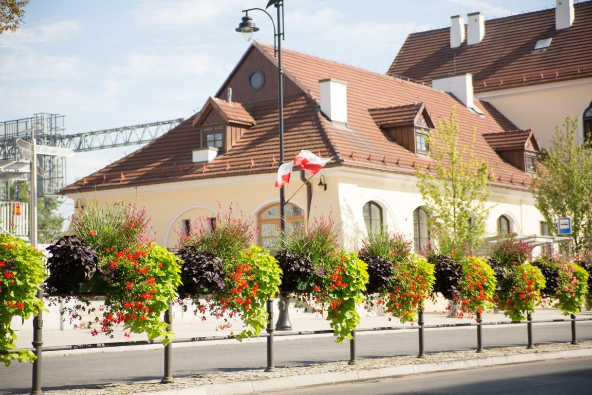skrzynie kwiatowe ukwiecenie miasta terra