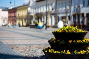wielkanocne dekoracje miejskie wieże kwiatowe terra group (9)
