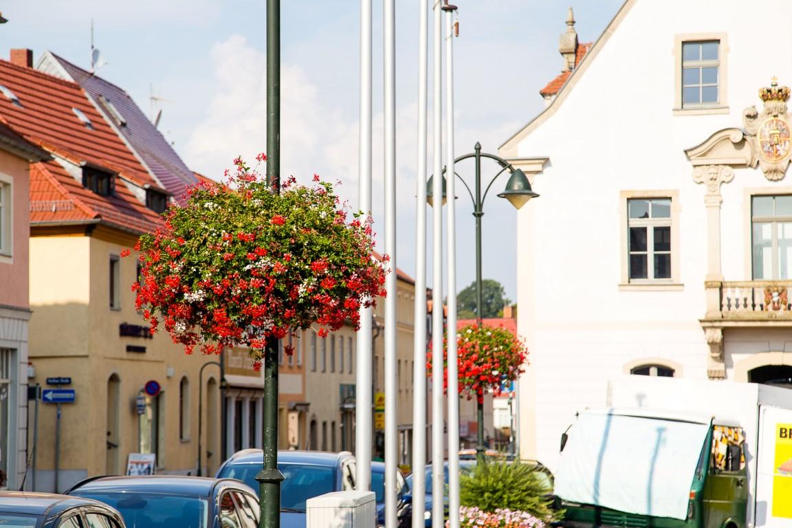 wiszące kwietniki terra group zieleń miejska 31 Wilsdruff niemcy