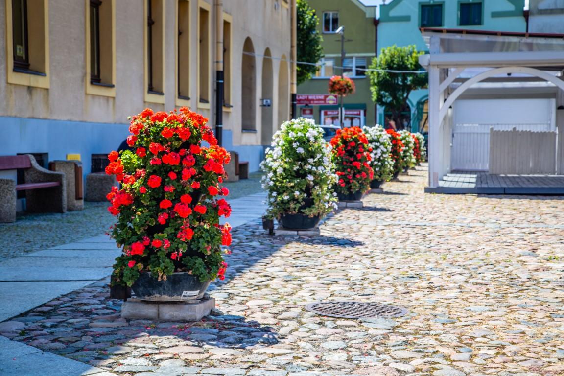 wieże kwiatowe kwietniki miejskie terra trzebiatów 7