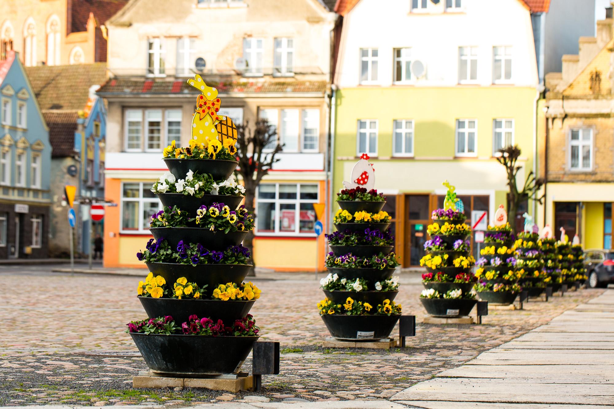 wieże kwiatowe wiosna trzebiatów