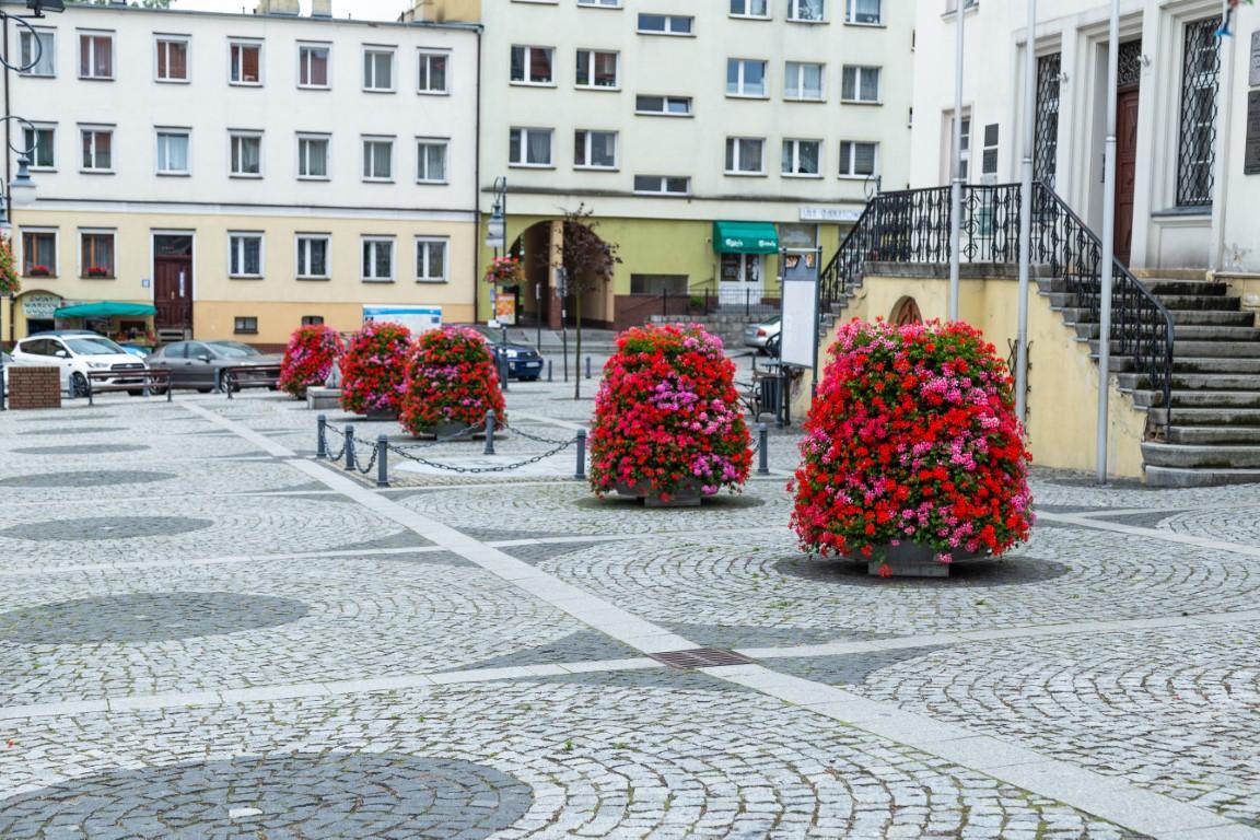 wieże kwiatowe kwietniki miejskie terra trzebnica 9