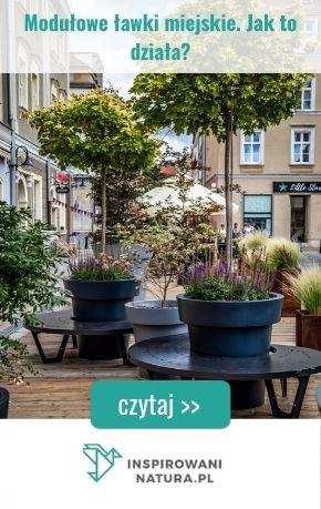 Modułowe ławki miejskie. Jak to działa?