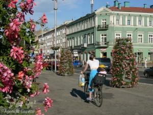 Kwiaty w centrum Częstochowy (Gazeta Wyborcza Częstochowa)
