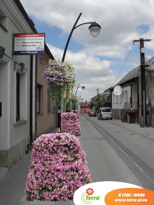 Kwiaty w mieście – wizualizacja dla Kolbuszowej