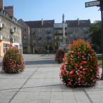 Miasto kwiatów – wizualizacja dla Prudnika